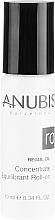 Ausgleichendes Konzetrat Roll-On gegen Schönheitsfehler - Anubis Regul Oil Concentrate Equilibrant Roll On — Bild N2