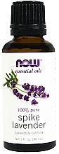Düfte, Parfümerie und Kosmetik 100% Reines ätherisches breitblättriges Lavendelöl - Now Foods Essential Oils 100% Pure Spike Lavender