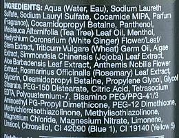 Erfrischendes Reinigungsshampoo mit Teebaum - Paul Mitchell Tea Tree Special Shampoo — Bild N4