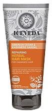 Düfte, Parfümerie und Kosmetik Haarmaske - Natura Siberica Iceveda Siberian Cedar&Cashmere Sandal Repair Herbal Hair Mask