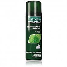 Düfte, Parfümerie und Kosmetik Erfrischender Rasierschaum mit Menthol - Palmolive Shaving Foam Menthol