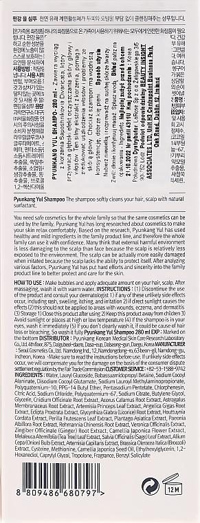 Straffendes Bio Shampoo mit Ingwer-Extrakt - Pyunkang Yul Shampoo — Bild N3