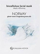 Feuchtigkeitsspendende Tuchmaske für das Gesicht Norwegen - Calluna Medica Norway Deeply Moisturizing Biocellulose Facial Mask — Bild N2