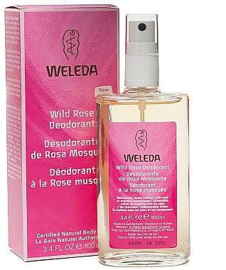 Deospray - Weleda Wild Rose Deodorant — Bild N1