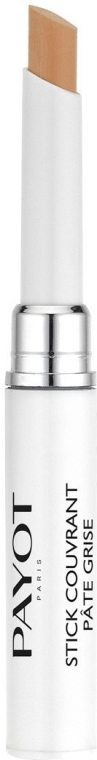 Gesichtsconcealer-Stick - Payot Stick Couvrant Pate Grise — Bild N1