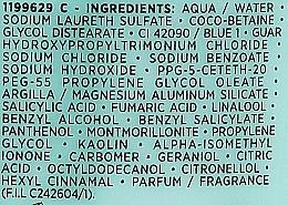 Pflegeshampoo mit 3 Tonerdesorten für normales und fettiges Haar - L'Oreal Paris Elseve Extraordinary Clay Shampoo — Bild N4