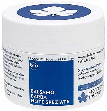 Bartbalsam - Biofficina Toscana Spicy Beard Conditioner — Bild N1