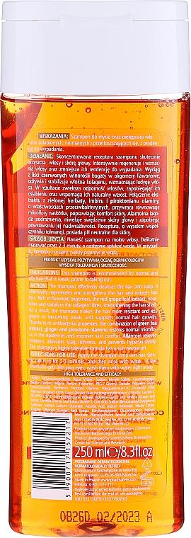 Nährendes Shampoo mit grünem Tee und Vitamin B5 - Pharmaceris H H-Keratineum Concentrated Strengthening Shampoo For Weak Hair — Bild N2