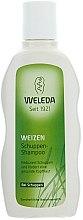 Düfte, Parfümerie und Kosmetik Weizen Anti-Schuppen Shampoo - Weleda Weizen Schuppen-Shampoo