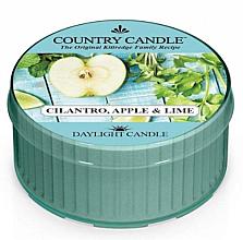 Düfte, Parfümerie und Kosmetik Duftkerze Cilantro, Apple & Lime - Kringle Candle Cilantro, Apple & Lime