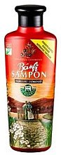 Düfte, Parfümerie und Kosmetik Stärkendes und pflegendes Shampoo mit Meerrettich, Senf und Wacholder - Herbaria Banfi Shampoo