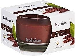 Düfte, Parfümerie und Kosmetik Duftglas Oud Wood - Bolsius True Scents Candle 63 mm x Ø90 mm