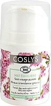 Düfte, Parfümerie und Kosmetik Mattierende Tagescreme für fettige Haut - Coslys Day Cream Oily Skin Types