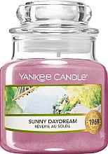 Düfte, Parfümerie und Kosmetik Duftkerze im Glas Sunny Daydream - Yankee Candle Sunny Daydream