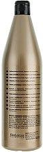 Pflegendes Protein-Shampoo mit Keratin - Salerm Linea Oro Shampoo Protein — Bild N4