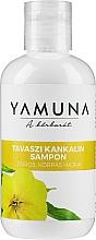 Düfte, Parfümerie und Kosmetik Shampoo für fettiges Haar - Yamuna Primrose Shampoo