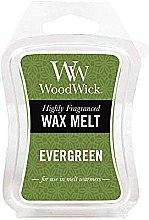 Düfte, Parfümerie und Kosmetik Tart-Duftwachs Evergreen - WoodWick Mini Wax Melt Evergreen Smart Wax System
