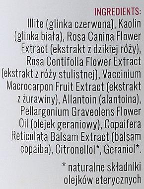 Gesichtsmaske mit Preiselbeere und wilder Rose - Iossi Face Mask — Bild N3