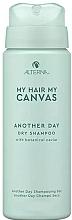 Düfte, Parfümerie und Kosmetik Trockenshampoo mit botanischem Kaviar - Alterna My Hair My Canvas Another Day Dry Shampoo (Mini)
