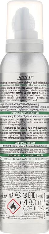 Schaum-Shampoo für dünnes, schwaches Haar mit Bernsteinextrakt - Farmona Jantar Ultradelicate Foam Shampoo — Bild N2