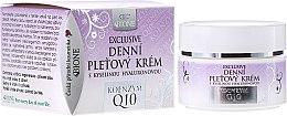 Düfte, Parfümerie und Kosmetik Tagescreme mit Hyaluronsäure und Coenzym Q10 - Bione Cosmetics Exclusive Organic Day Facial Cream With Q10