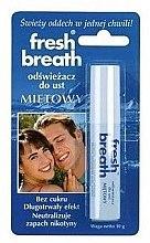 Düfte, Parfümerie und Kosmetik Erfrischendes Mundspray mit Minze - Fresh Breath
