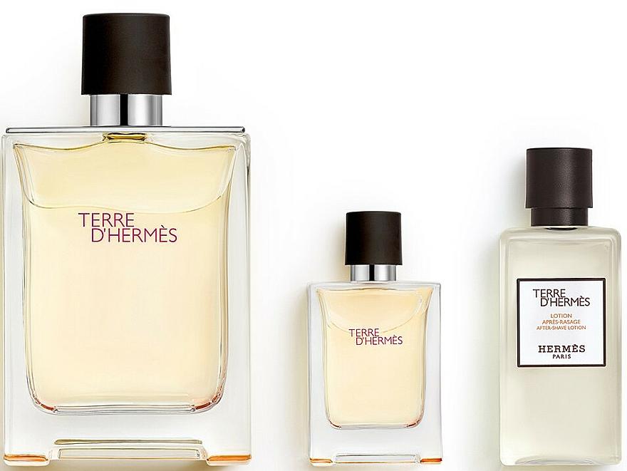 Hermes Terre d'Hermes - Duftset (Eau de Toilette 100ml + Eau de Toilette 12.5ml + After Shave Lotion 40ml) — Bild N3