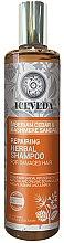 Düfte, Parfümerie und Kosmetik Shampoo - Natura Siberica Iceveda Siberian Cedar&Cashmere Sandal Repair Herbal Shampoo