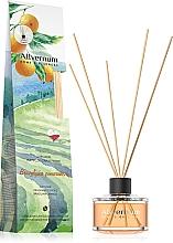 Düfte, Parfümerie und Kosmetik Raumerfrischer Brazilian Orange - Allvernum Home & Essences Diffuser Fragrance Sticks