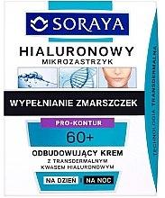 Düfte, Parfümerie und Kosmetik Regenerierende Tages- und Nachtcreme mit transdermaler Hyaluronsäure 60+ - Soraya Hialuronowy Mikrozastrzyk Regenerating Cream 40+