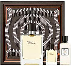 Düfte, Parfümerie und Kosmetik Hermes Terre D'Hermes - Duftset (Eau de Toilette 100ml + After Shave Lotion 40ml + Eau de Toilette 5ml)