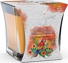 Düfte, Parfümerie und Kosmetik Duftkerze im Glas Tropical Blend - White Swan Tropical Blend