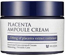 Düfte, Parfümerie und Kosmetik Gesichtscreme gegen Falten mit Plazentaextrakt - Mizon Placenta Ampoule Cream