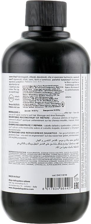 Reparierendes Shampoo für strapaziertes und brüchiges Haar mit Mikrokeratin - Diego Dalla Palma Cheraplex Shampoo — Bild N2