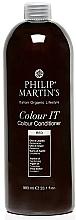 Düfte, Parfümerie und Kosmetik Getönte Haarspülung mit Sheabutter, Argan- und Jojobaöl - Philip Martin's Color It Color Conditioner