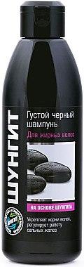 Shampoo für fettiges Haar mit Schungit-Kohle - Fratti HB Shungite Shampoo — Bild N1