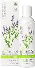 Düfte, Parfümerie und Kosmetik Reparierendes Shampoo mit Bio-Lavendel - Styx Naturcosmetic