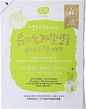 Düfte, Parfümerie und Kosmetik Gel-Maske für das Gesicht mit Bio-Früchten - Whamisa Organic Fruits Hydrogel Face Mask
