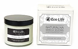 Düfte, Parfümerie und Kosmetik Soja-Duftkerze Walk in the Woods - Eco Life Soy Wax Candles
