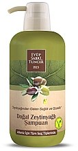 Düfte, Parfümerie und Kosmetik Shampoo mit Olivenöl - Eyup Sabri Tuncer Natural Olive Oil Shampoo