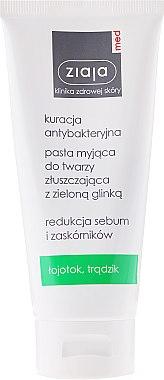Klärende Gesichtspaste mit grüner Tonerde - Ziaja Med Antibacterial Pasta — Bild N1