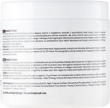 Gesichtsmaske mit Pflaumenextrakt und Chiasamen - APIS Professional Kakadu Plum Cream — Bild N2