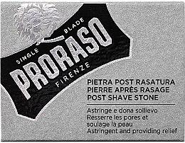 Antibakterieller und beruhigender After Shave Alaunstein - Proraso Post Shave Alum Stone — Bild N1