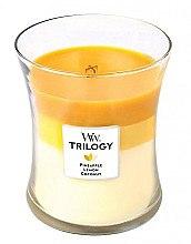 Duftkerze im Glas Fruits of Summer - WoodWick Hourglass Trilogy Candle Fruits of Summer  — Bild N1