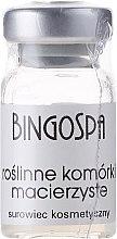 Düfte, Parfümerie und Kosmetik Serum mit Pflanzenstammzellen - BingoSpa Plant Stem Cells