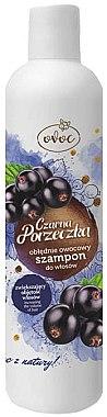 Shampoo für mehr Volumen mit Extrakt aus schwarzen Johannisbeeren, Seidenprotein und Sheabutter - Ovoc Black Currant Shampoo — Bild N1