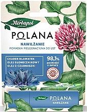 Düfte, Parfümerie und Kosmetik Feuchtigkeitsspendender Lippenbalsam mit Kornblume, Sonnenblumen- und Schwarzkümmelöl - Polana