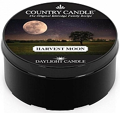 Düfte, Parfümerie und Kosmetik Duftkerze Harvest Moon - Country Candle Harvest Moon Daylight