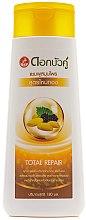 Düfte, Parfümerie und Kosmetik Regenerierendes Shampoo mit Kräutern und Seide - Twin Lotus Golden Silk Herbal Total Repair Shampoo