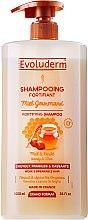 Düfte, Parfümerie und Kosmetik Shampoo für sprödes Haar mit Honig und Shea - Evoluderm Shea Butter & Honey Shampoo